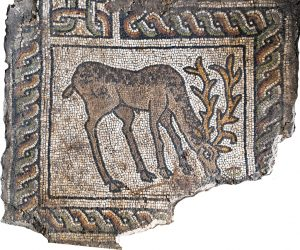 Малката базилик елен